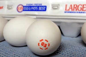 Egglands Best