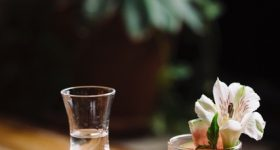 11 Cinco de Mayo Cocktail Recipes You Need to Try