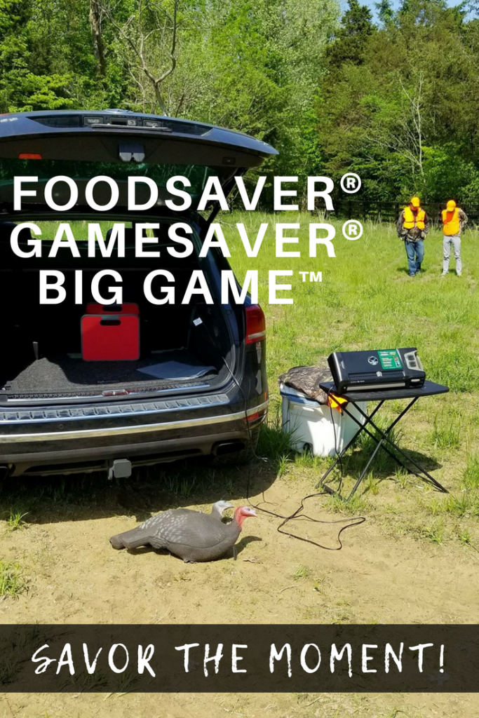 Preserve Each Moment with GameSaver