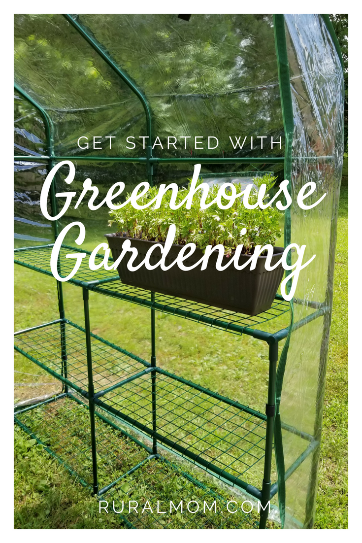 This Summer, Get Started with Greenhouse Gardening