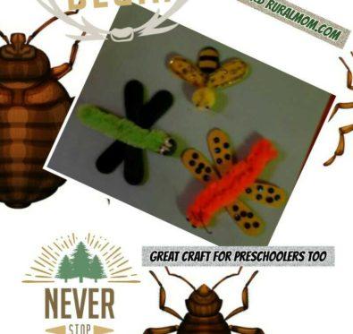 bug magnet craft