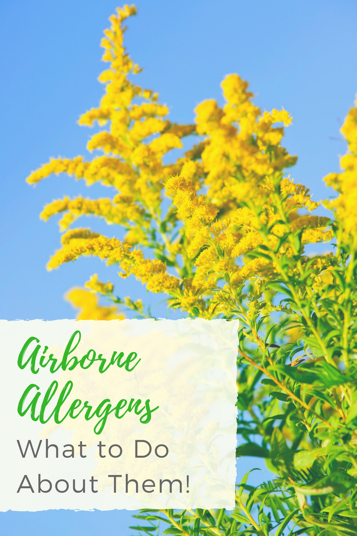 5 Airborne Allergens and What to Do About Them