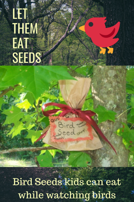 Fun recipe the kids will enjoy as they watch the back yard birds enjoy their treats
