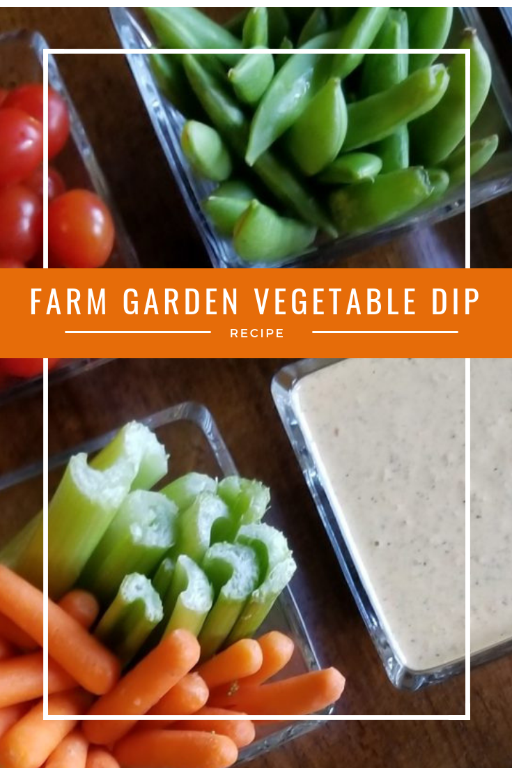 Rural Mom's Farm Garden Vegetable Dip