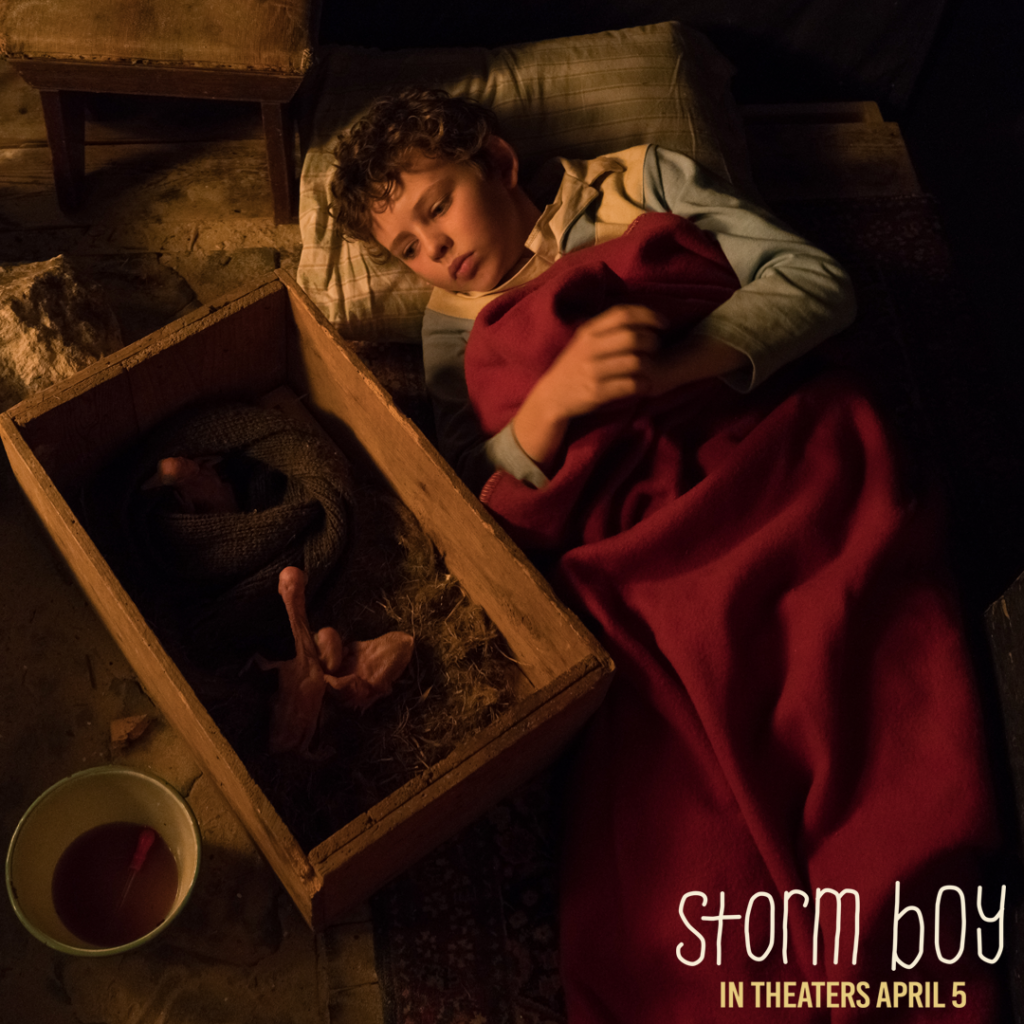 STORM BOY - An Unforgettable Film with an Ecological Heart