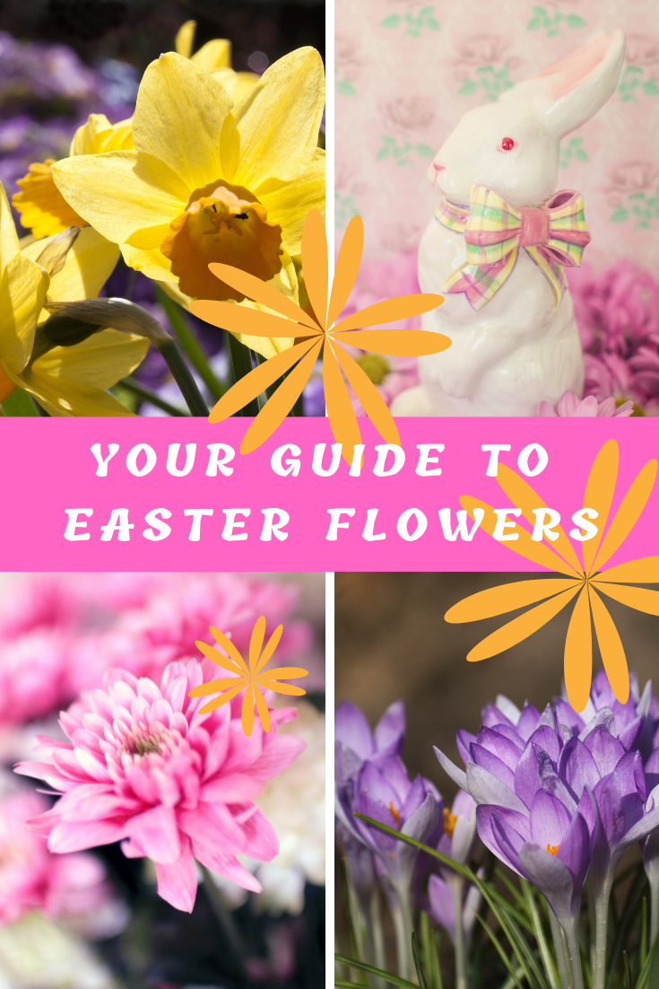 Your Quick Guide to Easter Flowers