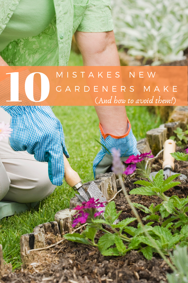 10 Mistakes New Gardeners Make (and how to avoid them!)