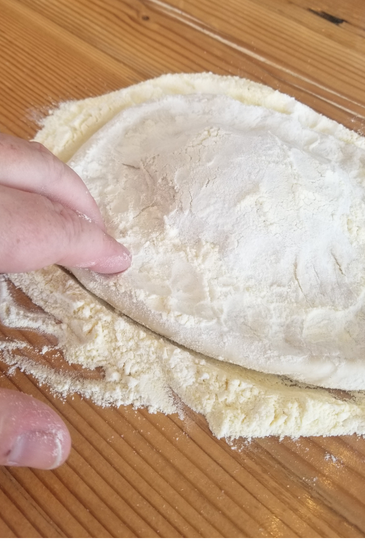 Make Your Own Pizza Dough (with tips from 1889 Pizza Napolenta!)