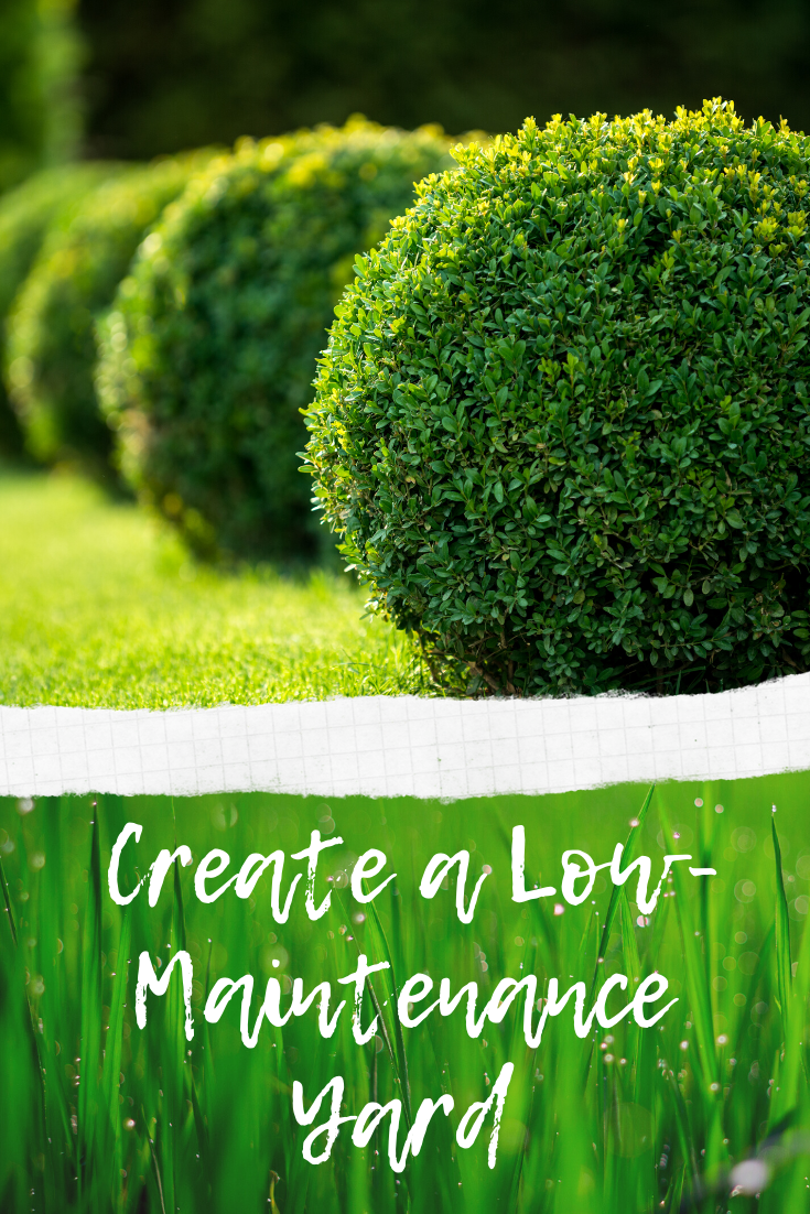 Ways To Create a Low-Maintenance Yard