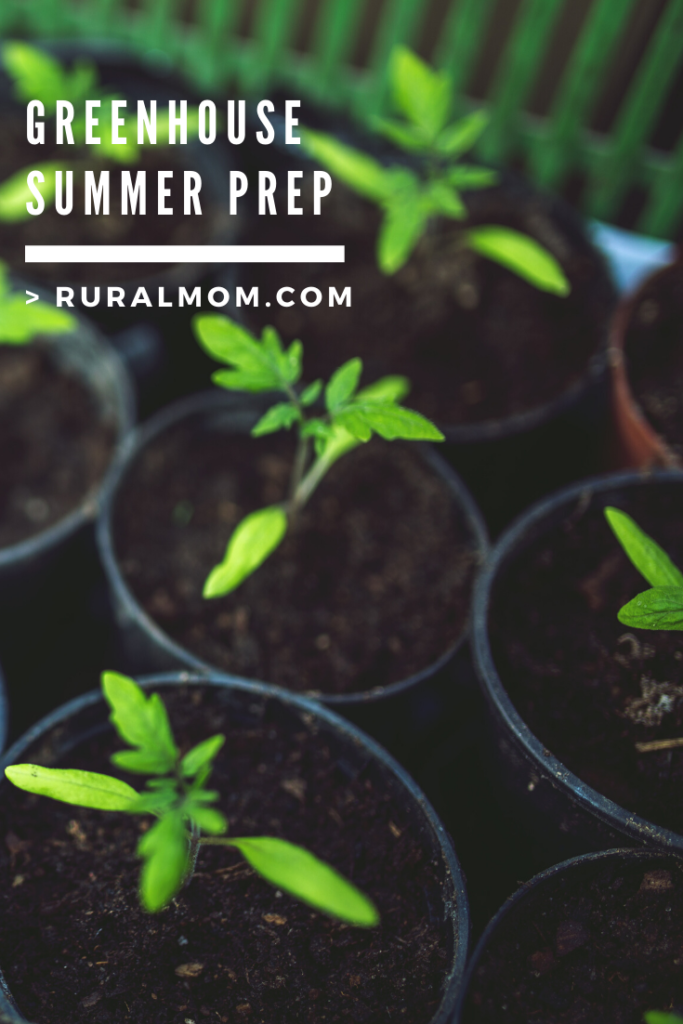 How To Prep Your Greenhouse for Summer