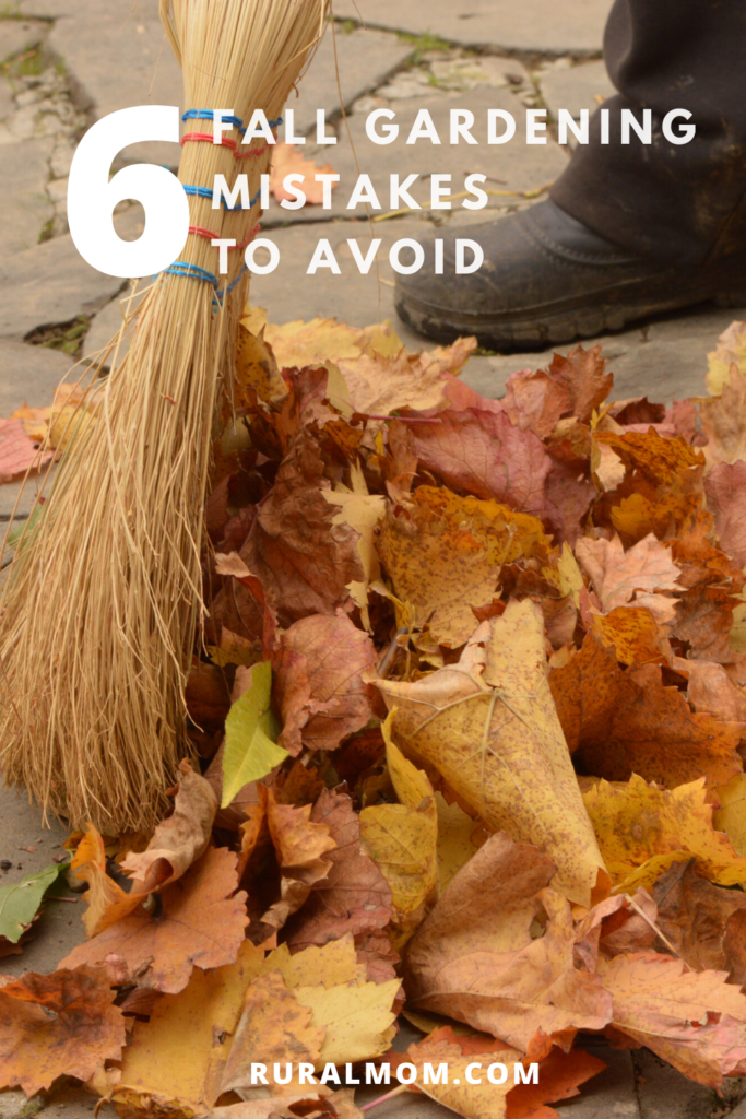 6 More Fall Gardening Mistakes to Avoid