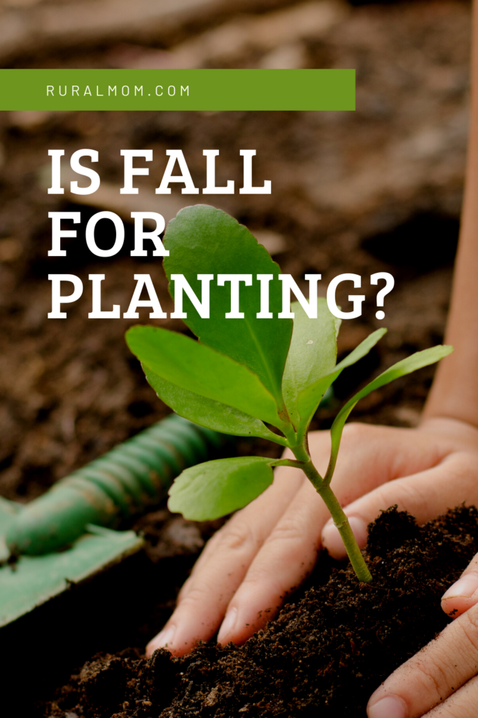 Is Fall for Planting?