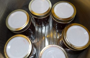 Strawberry Jam with Tattler Reusable Canning Lids