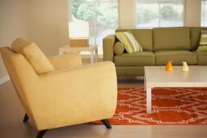 Fall Carpet Update