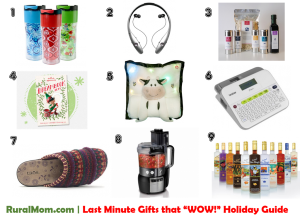 "Last Minute Gifts that ""WOW!"" Holiday Gift Guide"