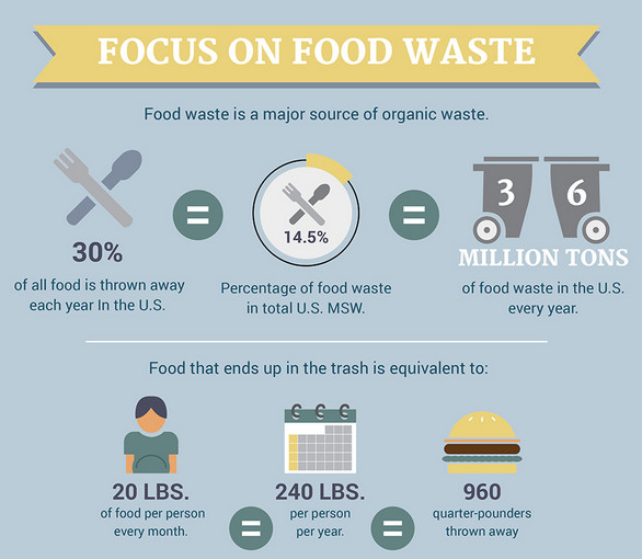 How to Immediately Minimize Food Waste