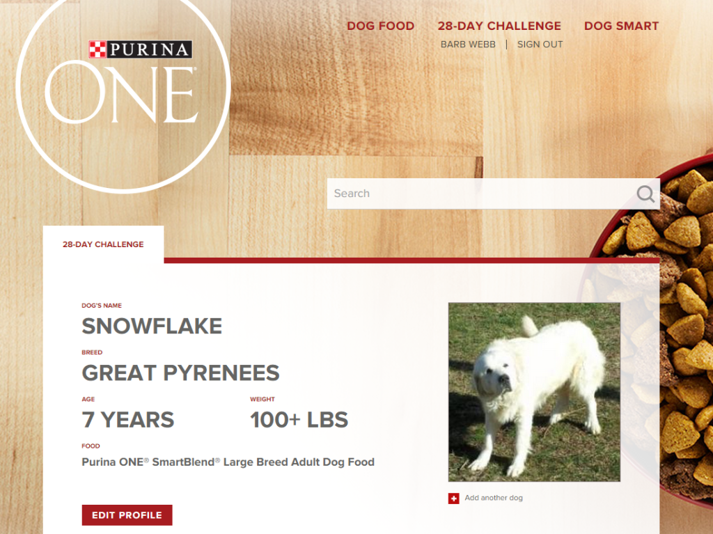 Our Purina ONE 28-Day Challenge Results #ONEDifference