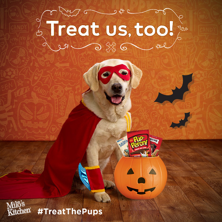 Halloween Hounds get in on the fun: Milk-Bone study shows dogs are ultimate trick-or-treaters!