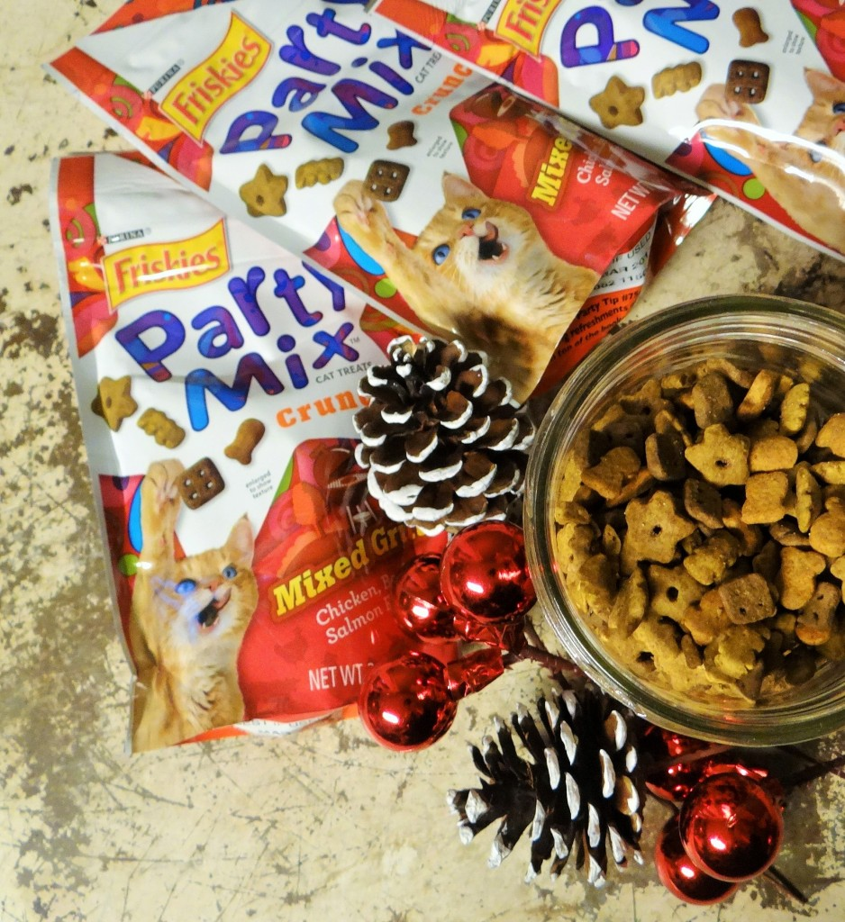 Quick and Easy DIY Gifts for Pets! #SeasonsTreatings