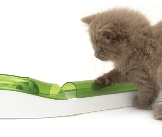 Our Top Holiday Gift Pick for Cats is the Cat-It Oasis!