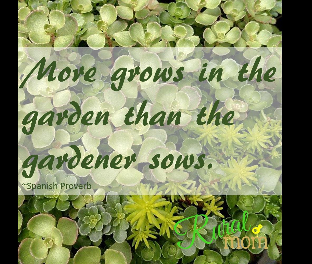 Gardening Quotes gardener grows