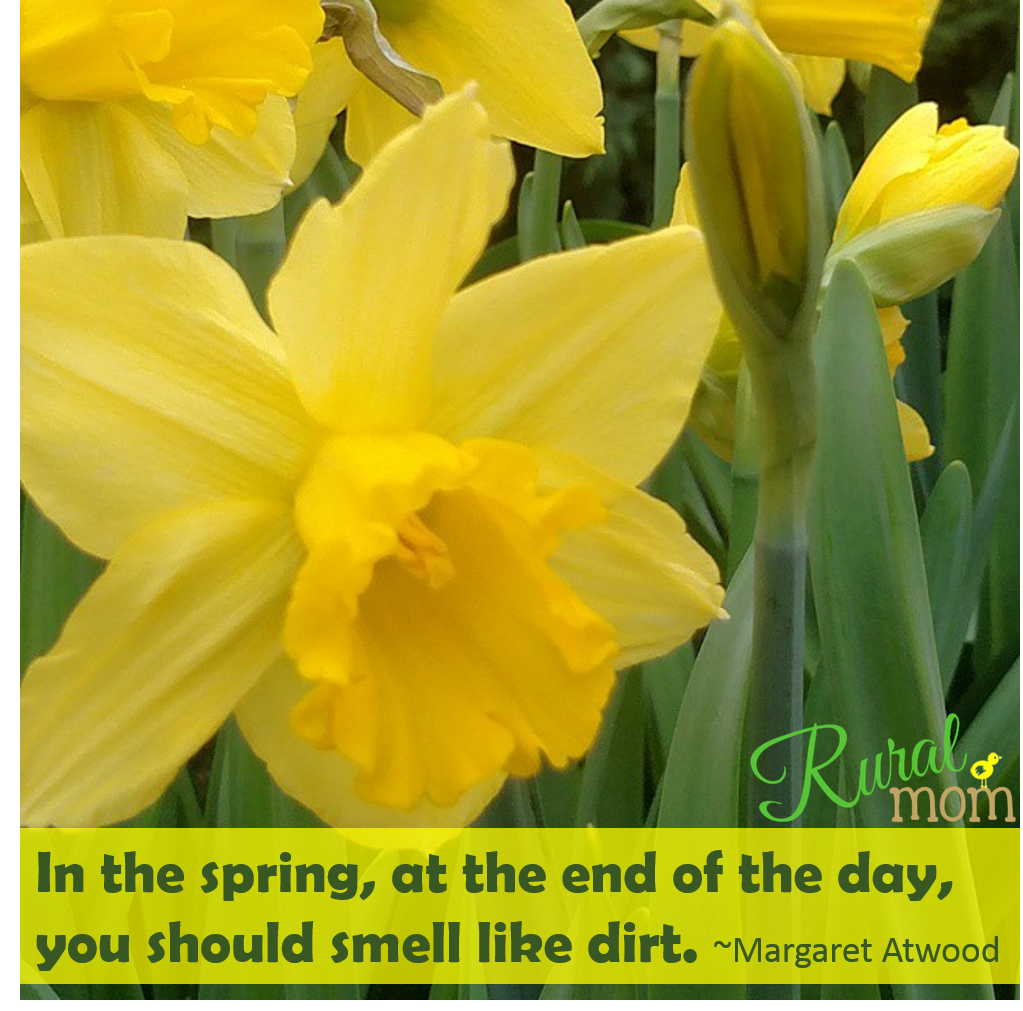 Gardening Quotes spring day