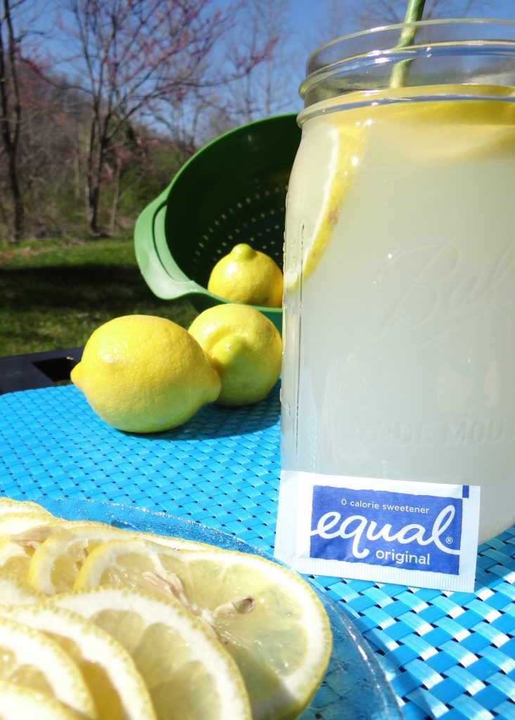 What's Your Southern Tea Style? #EmbraceYourTaste ~ Fresh Lemonade