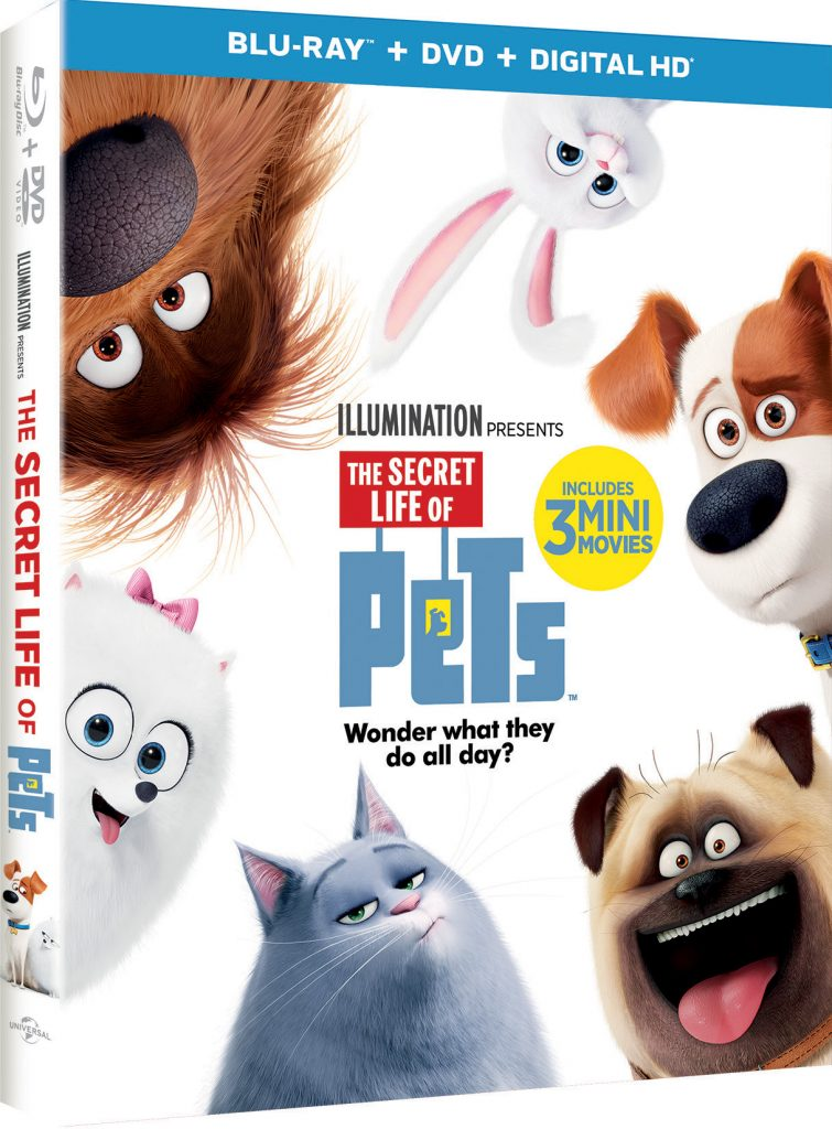 What Do Your Pets Do When You're Not Home? #TheSecretLifeOfPets #PetsPack