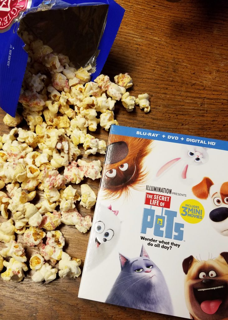 The Secret Life of Pets Family Movie Night! #TheSecretLifeOfPets #PetsPack