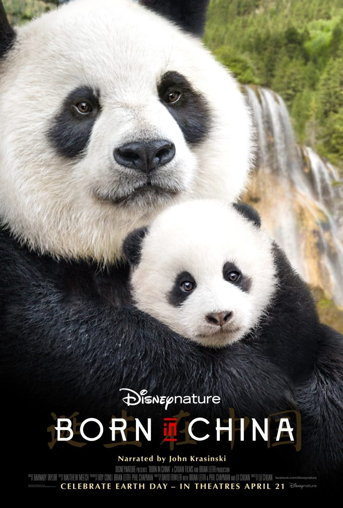 Disneynature BORN IN CHINA Activity Packet and Educator's Guide #BornInChina