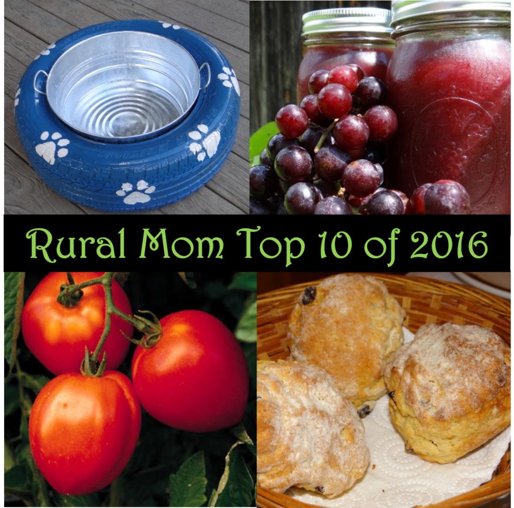 From Instant Pot Recipes to DIY Dog Bowls - Rural Mom Top 10 of 2016