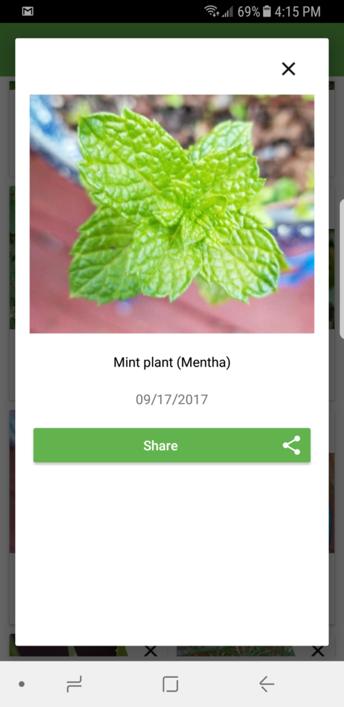 Instantly Identify any Plant or Tree with PlantSnap! #hunting4plants