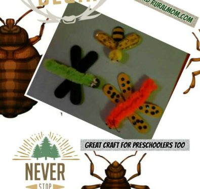 bug magnet craft