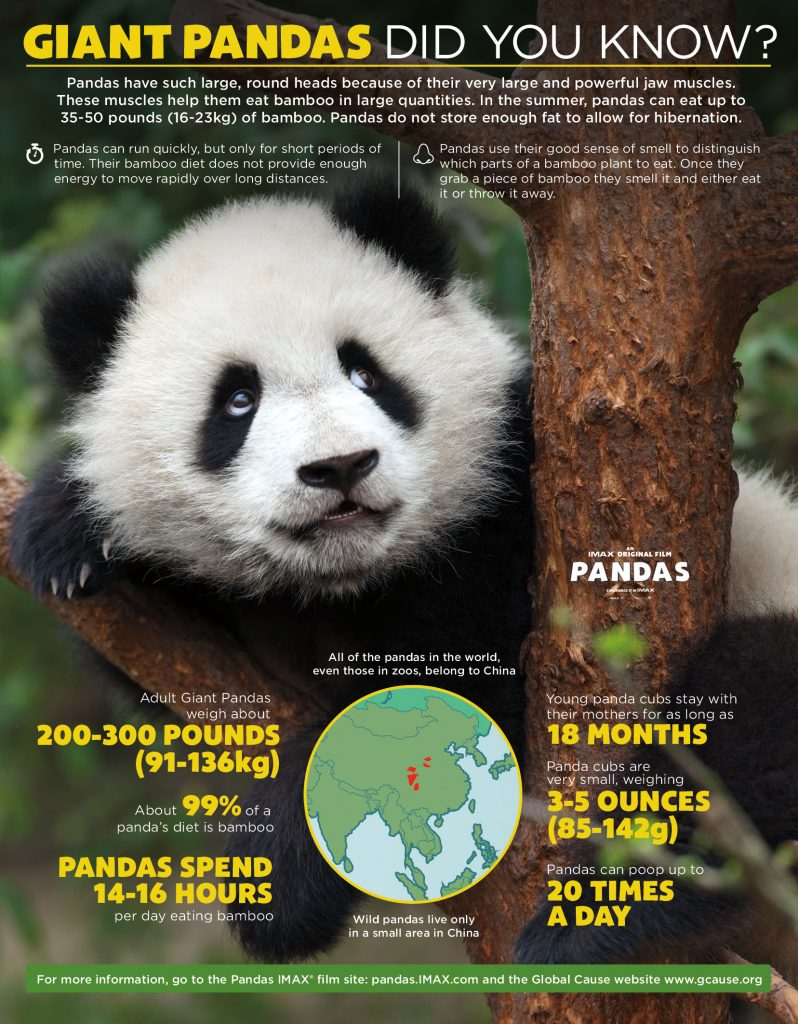 PANDAS Giveaway