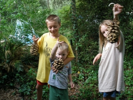 Crafts that teach children to care for nature