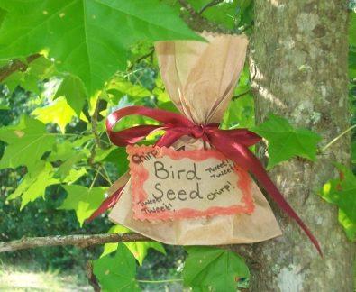 bird seeds recipe snack for kids