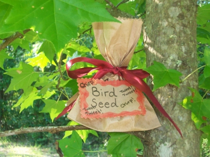 bird seeds recipe snack for kids