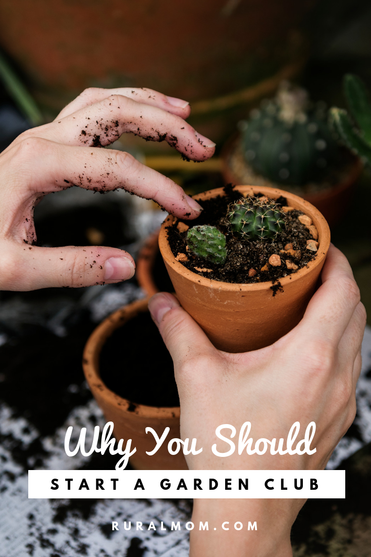 This is Why You Should Start a Garden Club