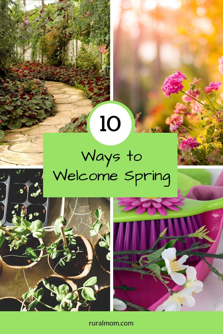 10 Terrific Ways to Welcome Spring
