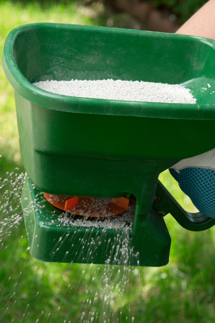 Quick Guide for Summer Lawn Care