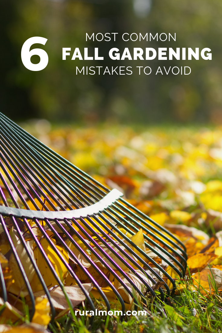 6 Most Common Fall Gardening Mistakes to Avoid