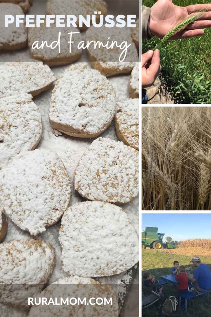 Farming and Pfeffernüsse (Recipe!) #FarmFoodTour