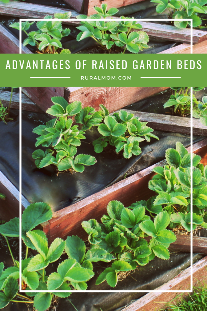 What are the advantages of raised garden beds?